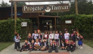 Infantil 3 visita projeto Tamar